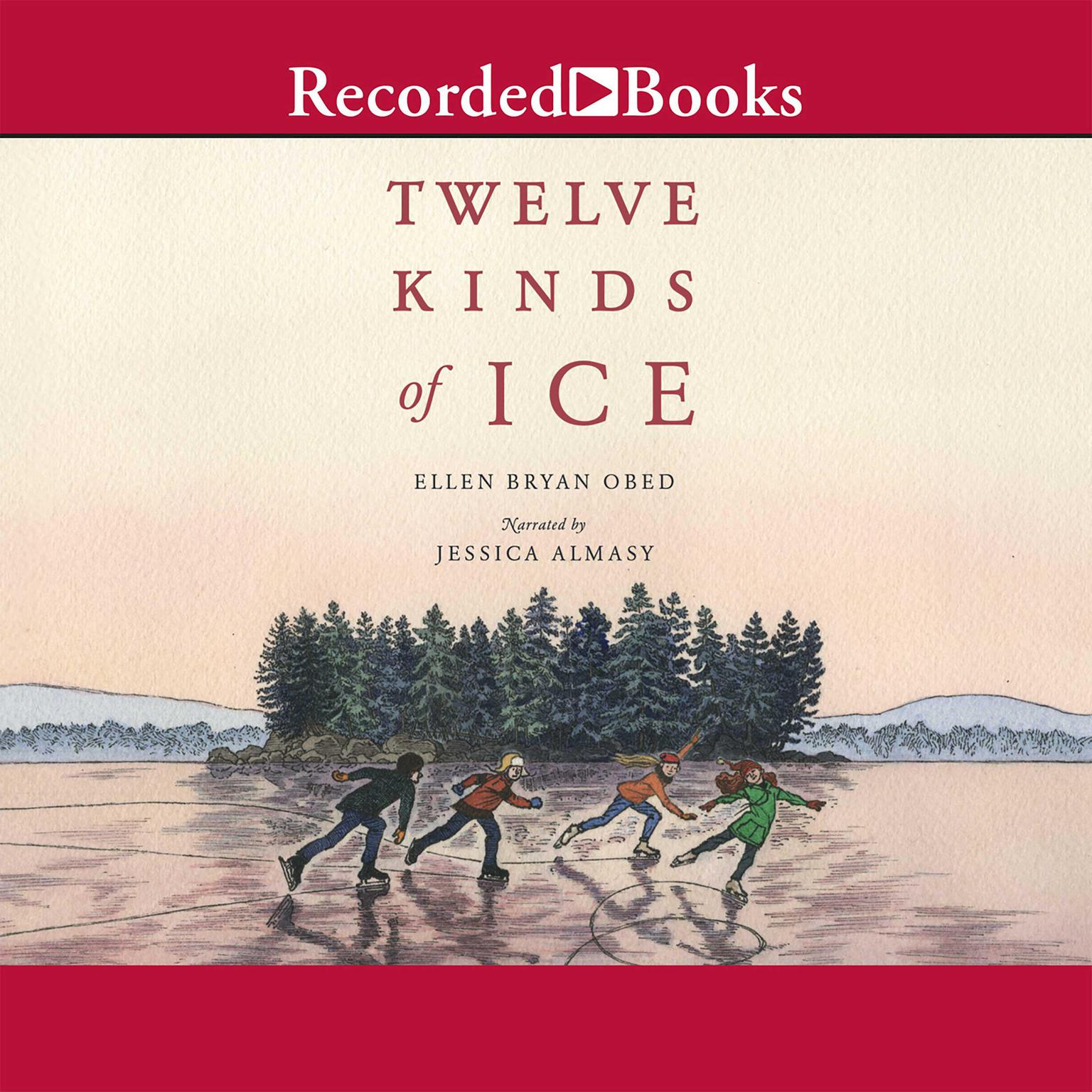 Printable Twelve Kinds of Ice Audiobook Cover Art