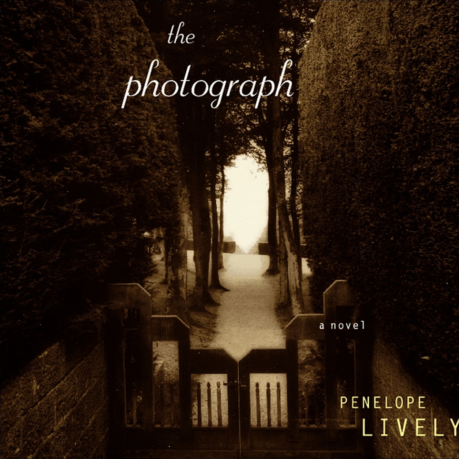 Printable The Photograph Audiobook Cover Art