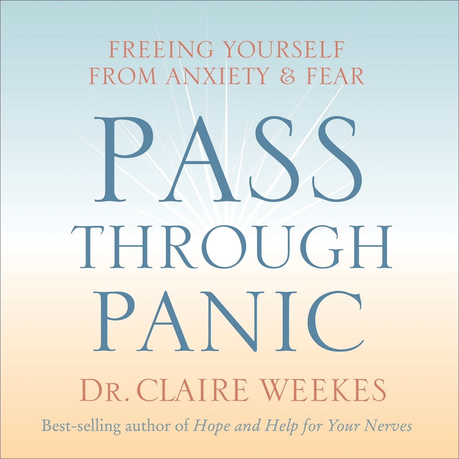 Printable Pass Through Panic: Freeing Yourself from Anxiety and Fear Audiobook Cover Art