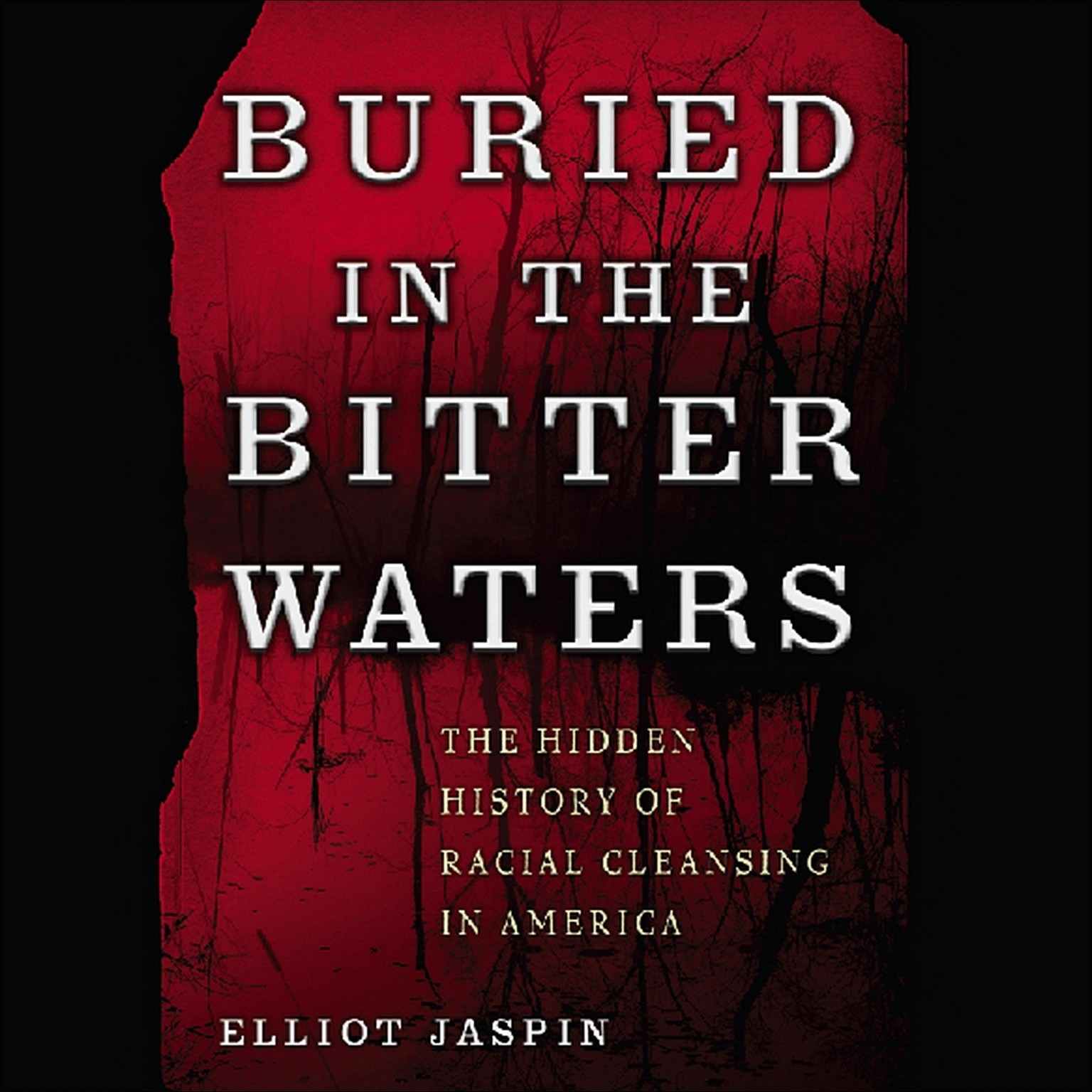 Printable Buried in the Bitter Waters: The Hidden History of Racial Cleansing in America Audiobook Cover Art