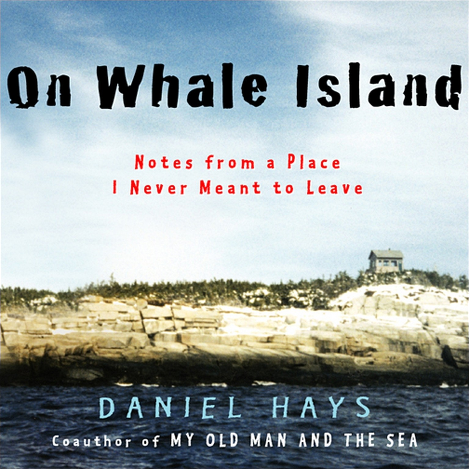 Printable On Whale Island: Notes from a Place I Never Meant to Leave Audiobook Cover Art