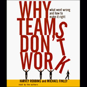 Why Teams Don't Work: What Went Wrong and How to Make It Right Audiobook, by Harvey Robbins, Michael Finley