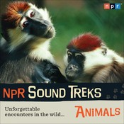 NPR Sound Treks: Animals: Unforgettable Encounters in the Wild Audiobook, by NPR