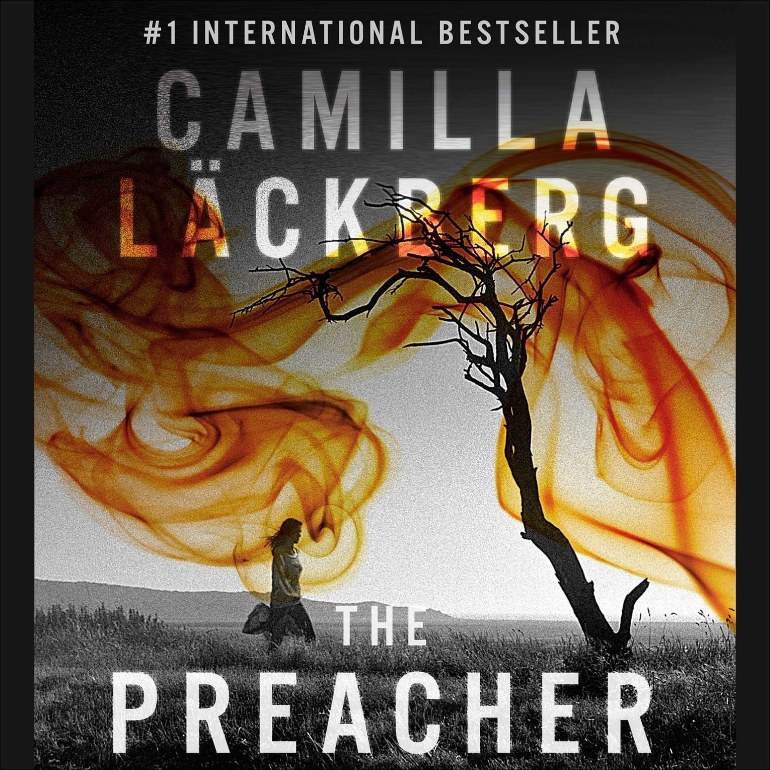 Printable The Preacher Audiobook Cover Art