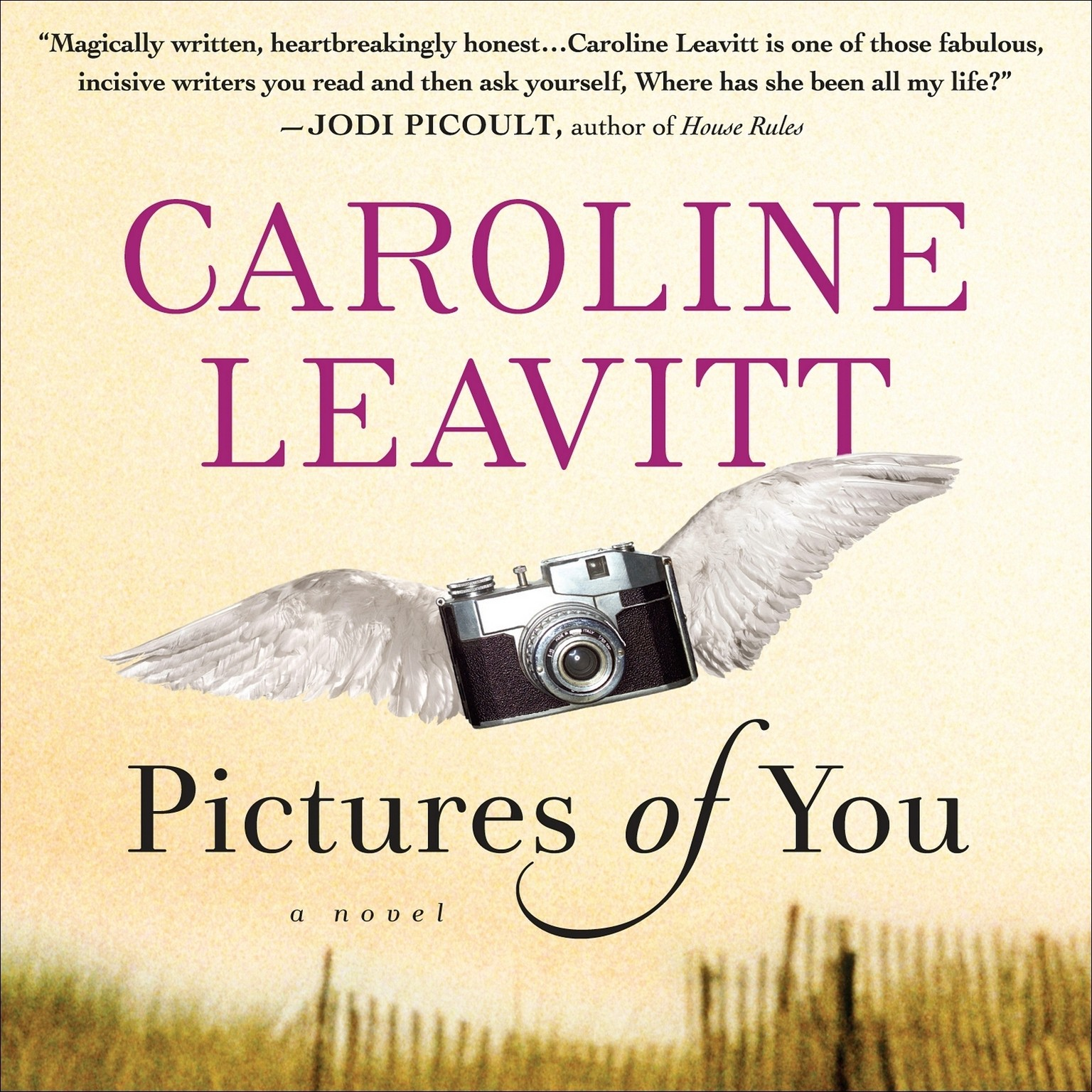 Printable Pictures of You Audiobook Cover Art