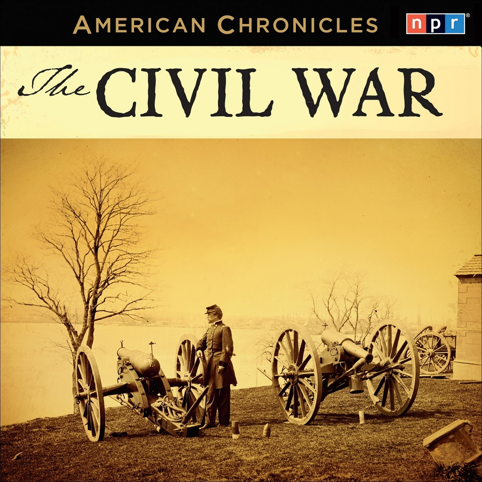 Printable NPR American Chronicles: The Civil War Audiobook Cover Art