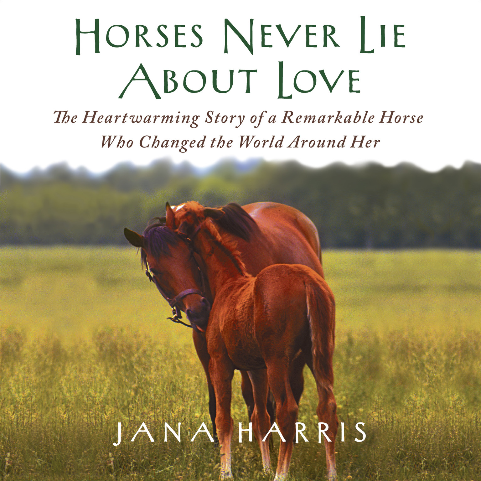 Printable Horses Never Lie About Love: The Heartwarming Story of a Remarkable Horse Who Changed the World Around Her Audiobook Cover Art