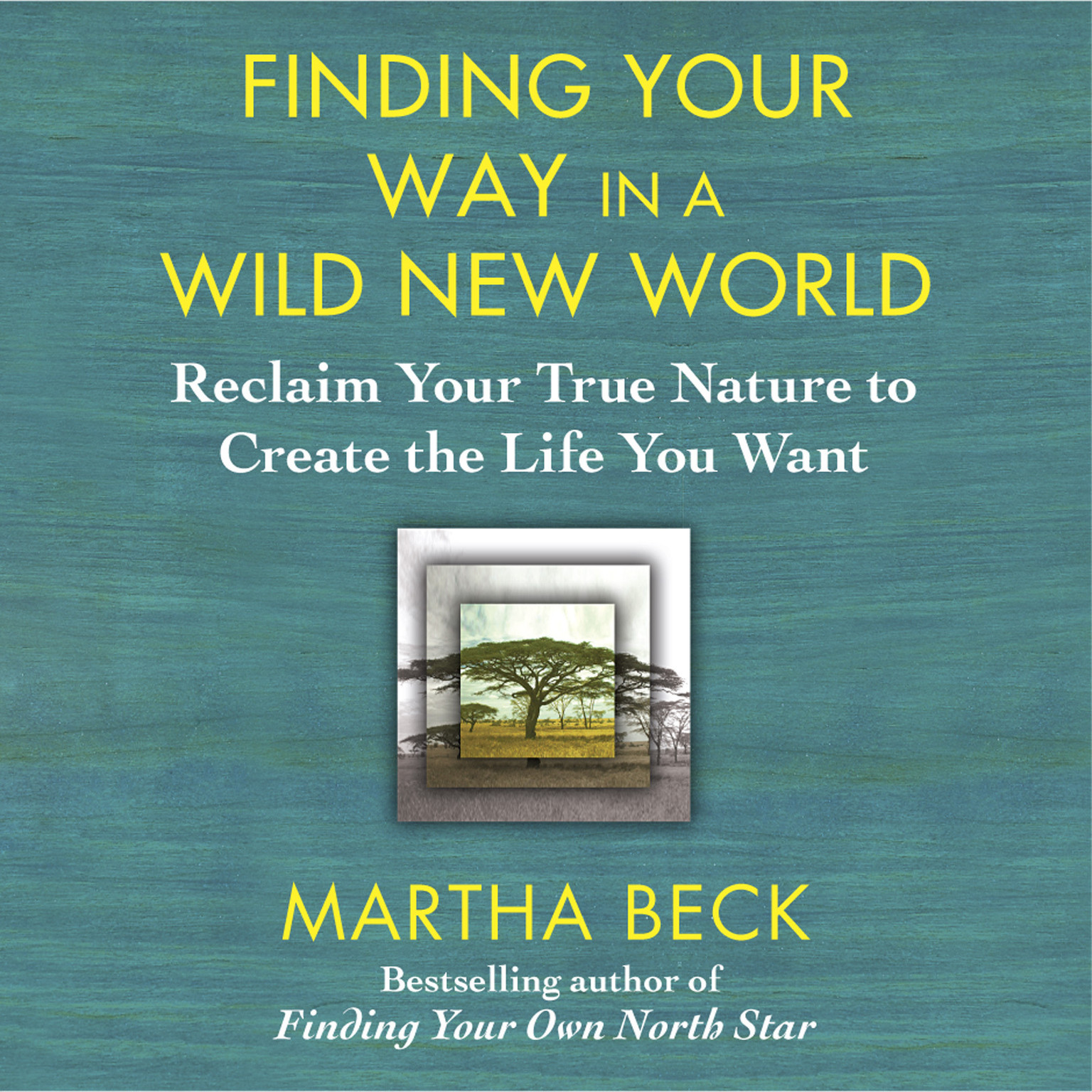 Printable Finding Your Way in a Wild New World: Reclaim Your True Nature to Create the Life You Want Audiobook Cover Art