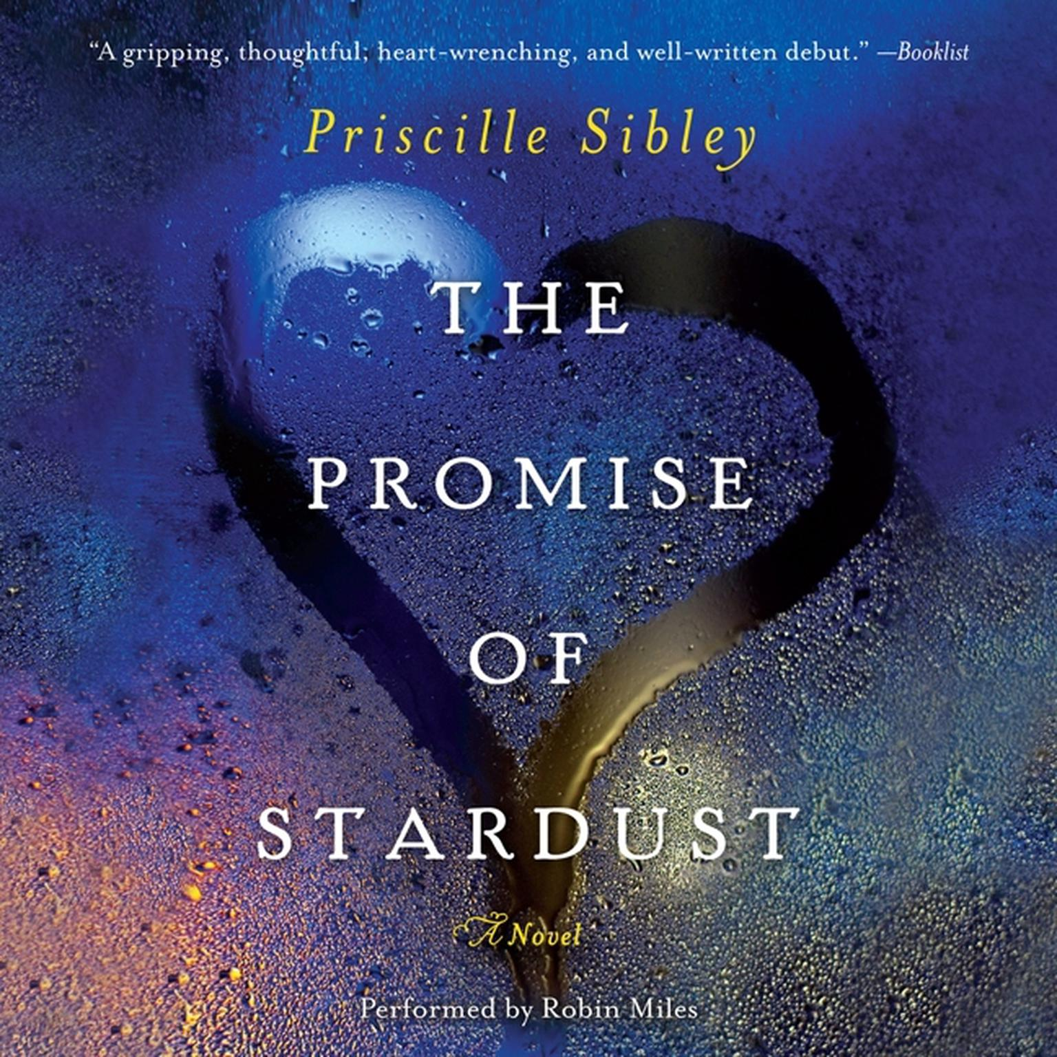 Printable The Promise of Stardust: A Novel Audiobook Cover Art