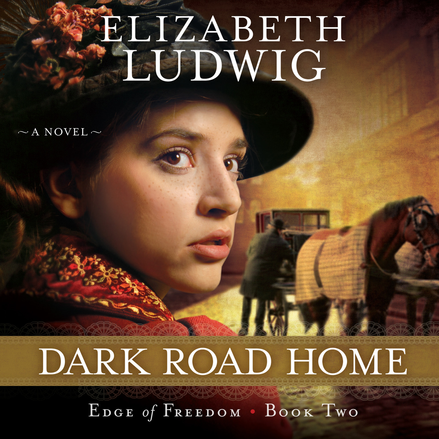 Printable Dark Road Home Audiobook Cover Art