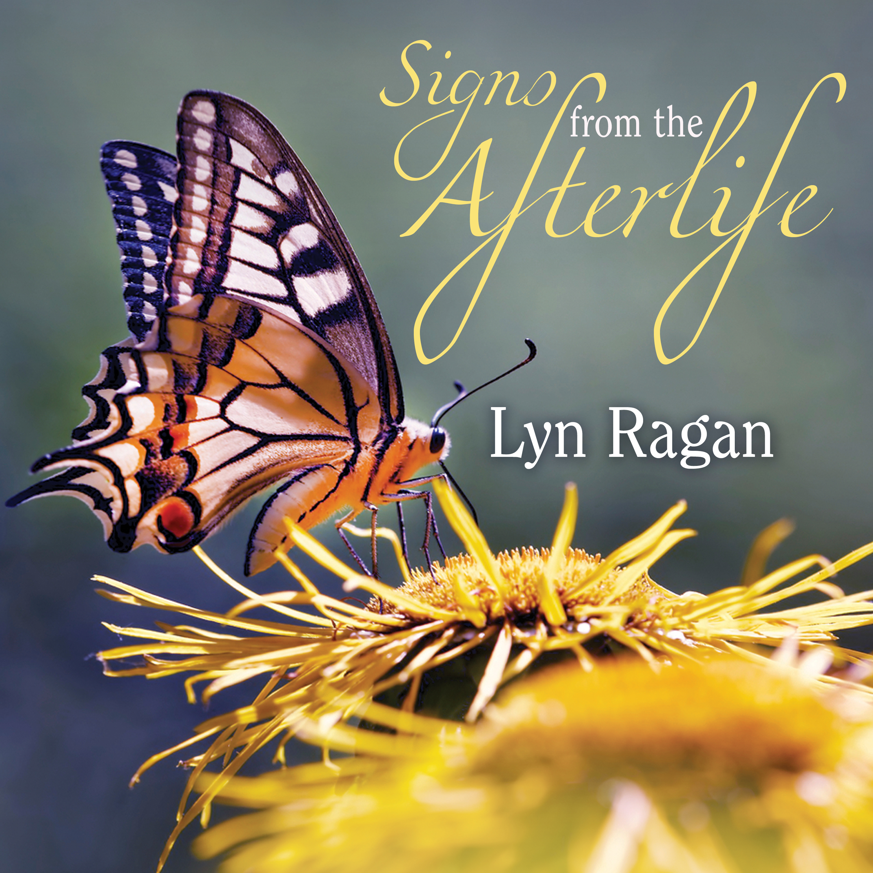 Printable Signs From the Afterlife Audiobook Cover Art