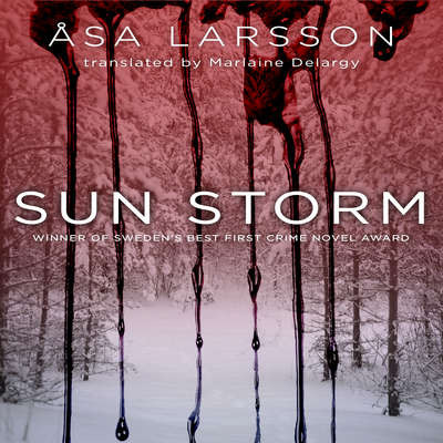 Sun Storm Audiobook, by Åsa Larsson