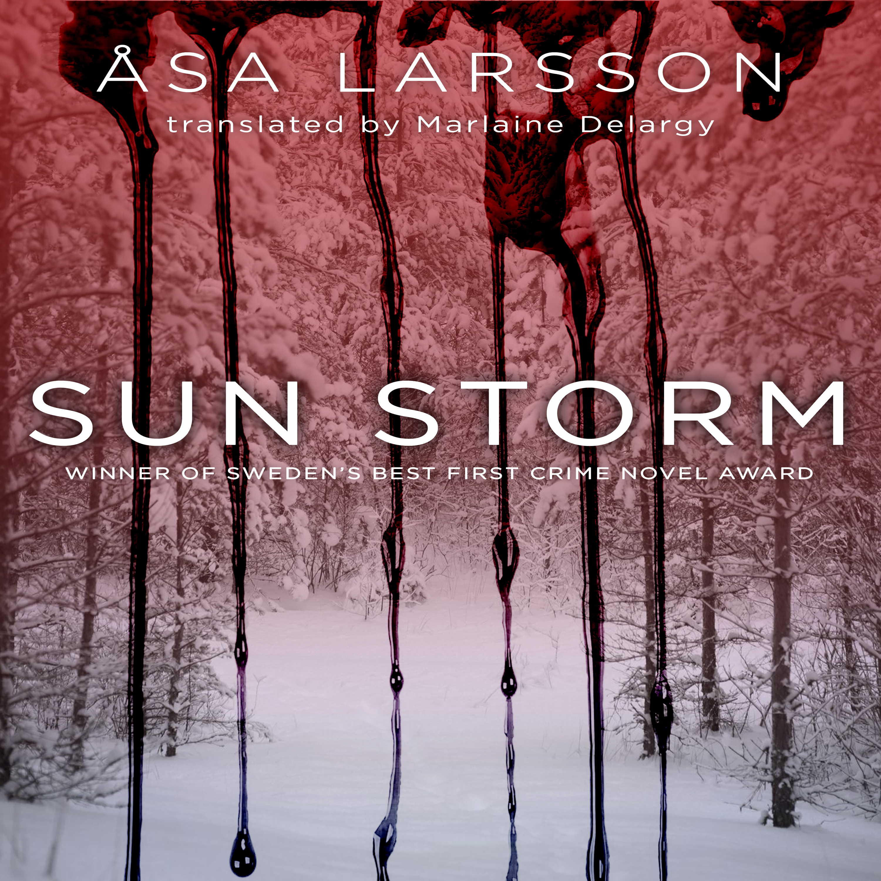 Printable Sun Storm Audiobook Cover Art