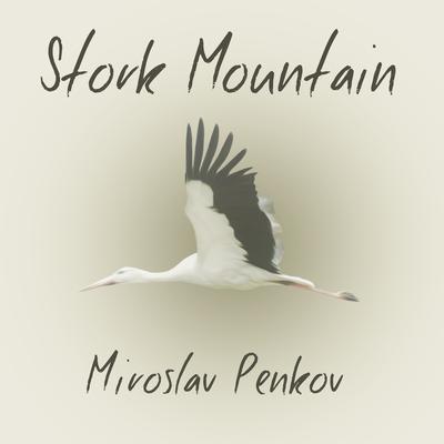Stork Mountain Audiobook, by Miroslav Penkov