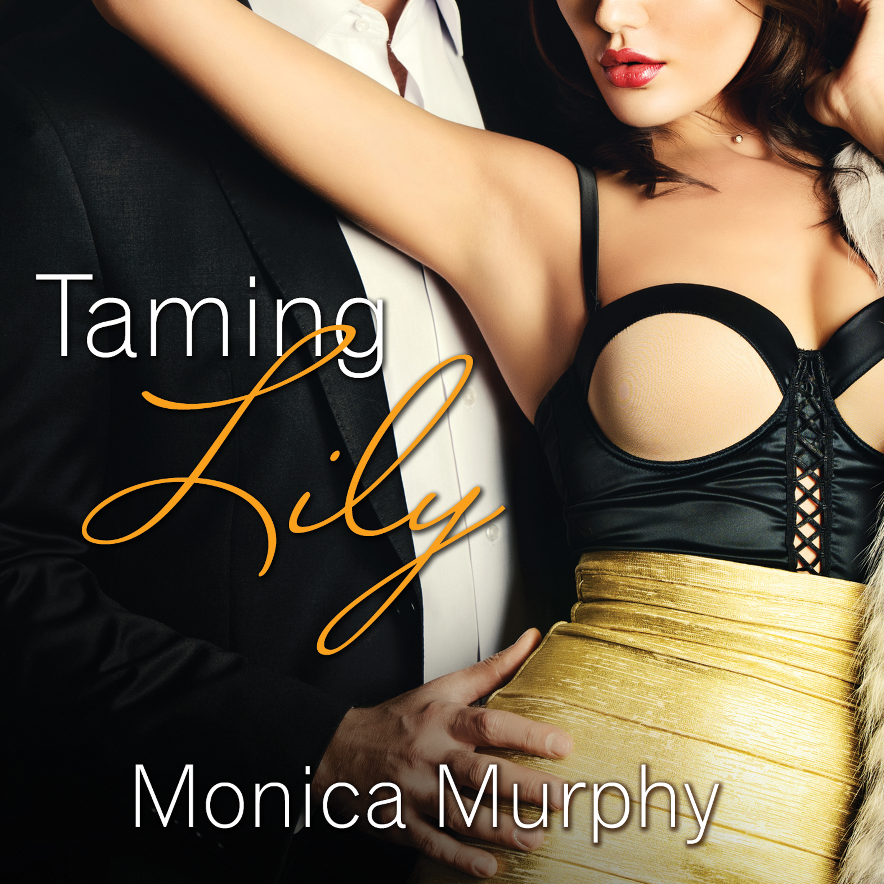 Printable Taming Lily Audiobook Cover Art