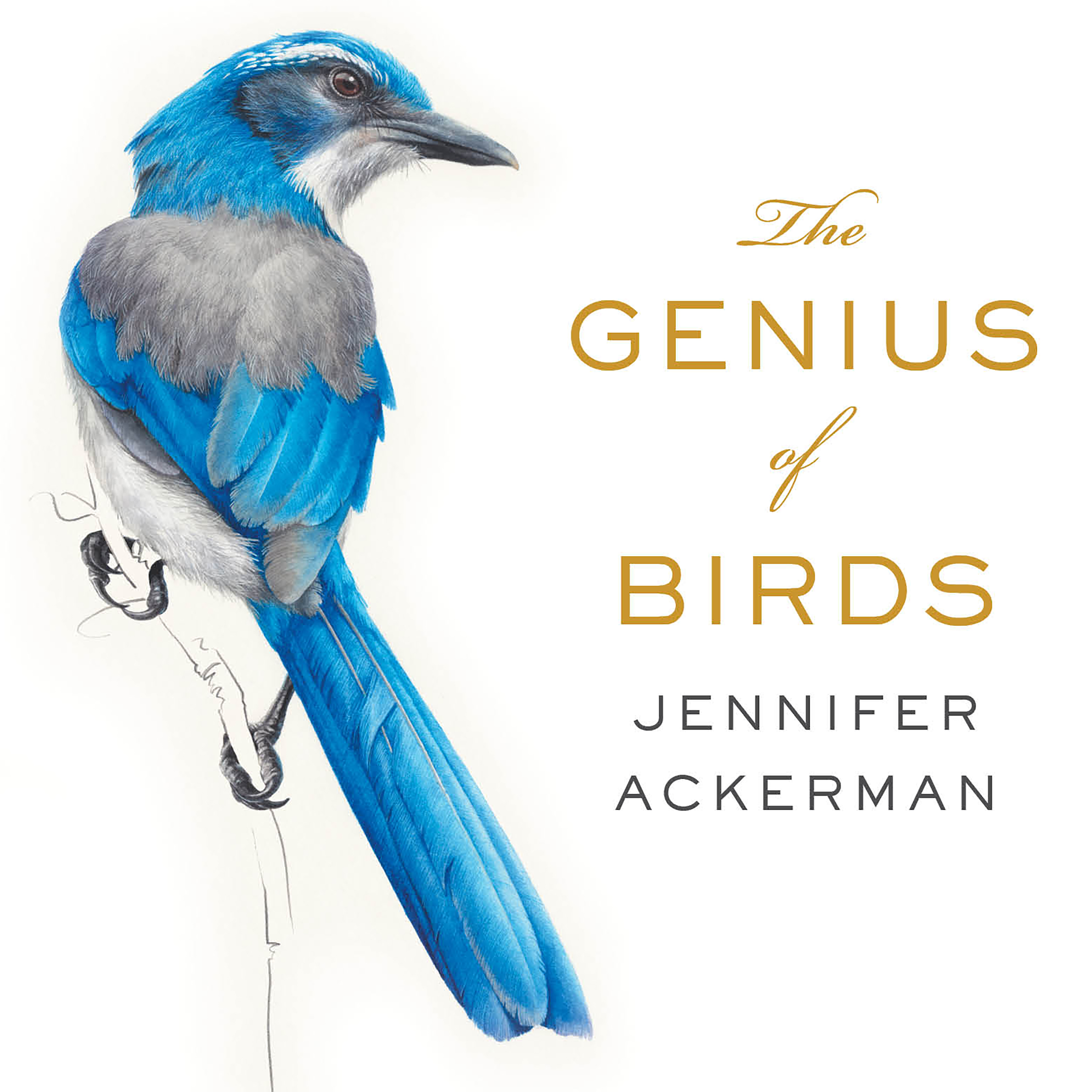 Printable The Genius of Birds Audiobook Cover Art