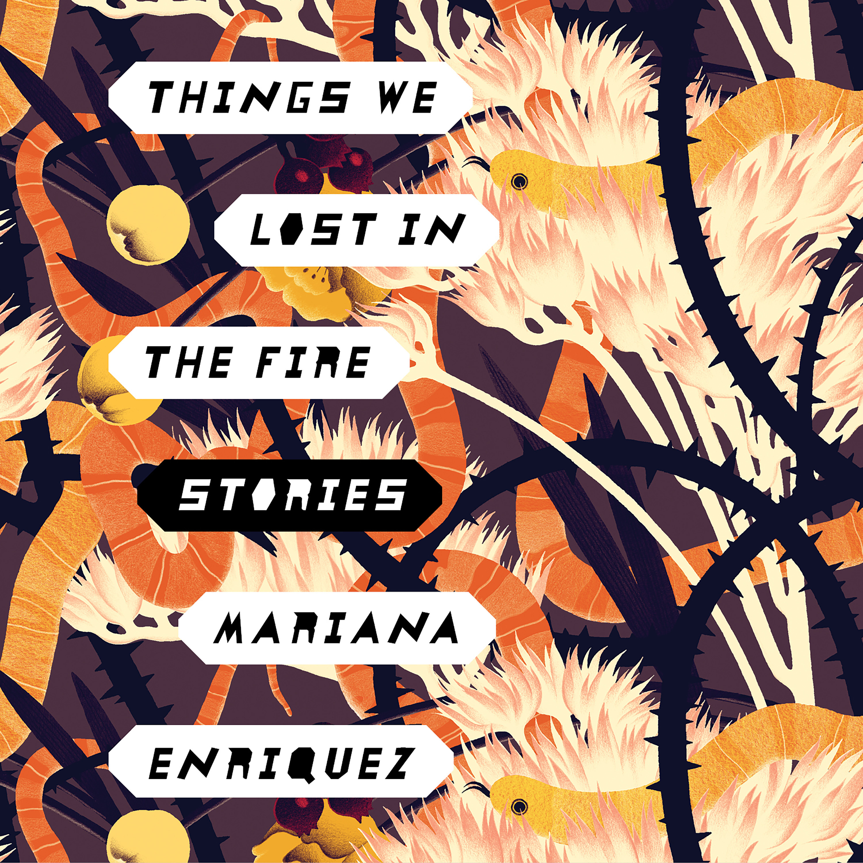 Printable Things We Lost in the Fire: Stories Audiobook Cover Art