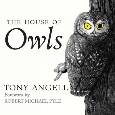 The House of Owls Audiobook, by Tony Angell