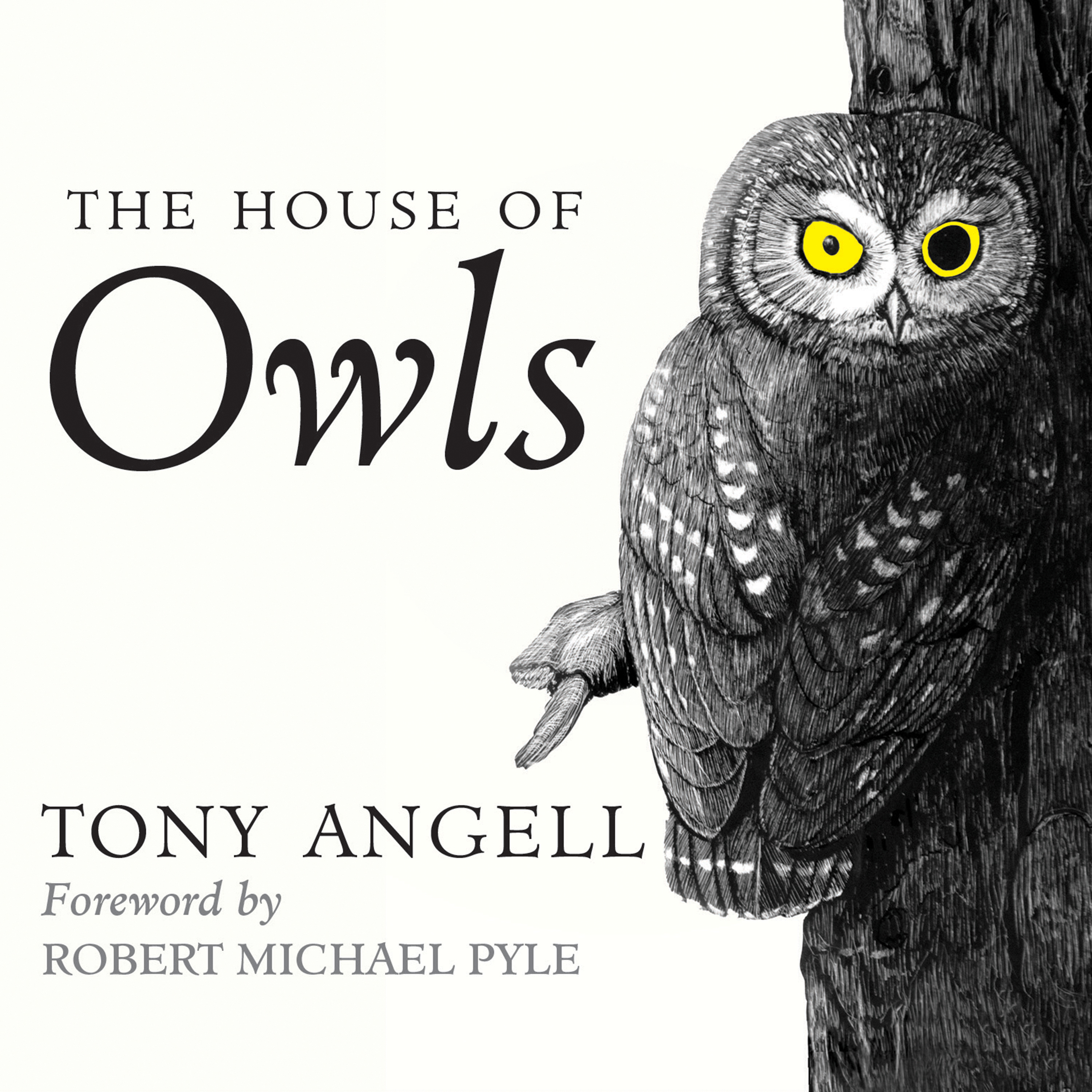 Printable The House of Owls Audiobook Cover Art