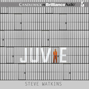 Juvie Audiobook, by Steve Watkins