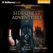 SideQuest Adventures Audiobook, by Mark Teppo