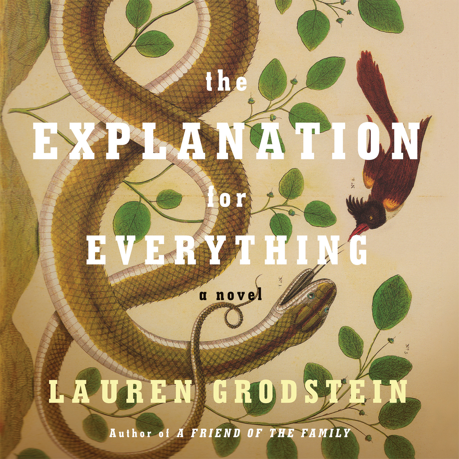Printable The Explanation for Everything Audiobook Cover Art
