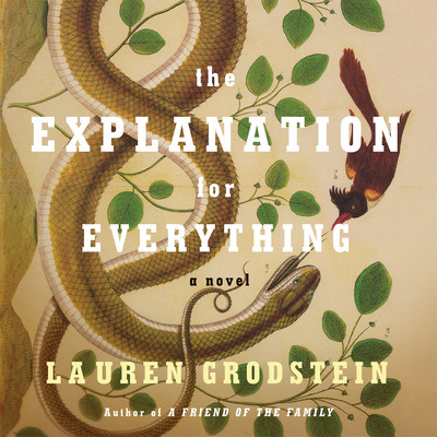 The Explanation for Everything Audiobook, by Lauren Grodstein