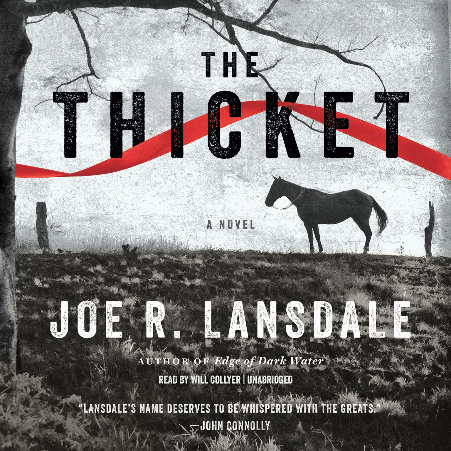 Printable The Thicket Audiobook Cover Art