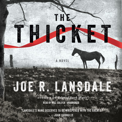 The Thicket Audiobook, by Joe R. Lansdale