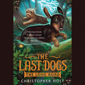The Long Road Audiobook, by Christopher Holt