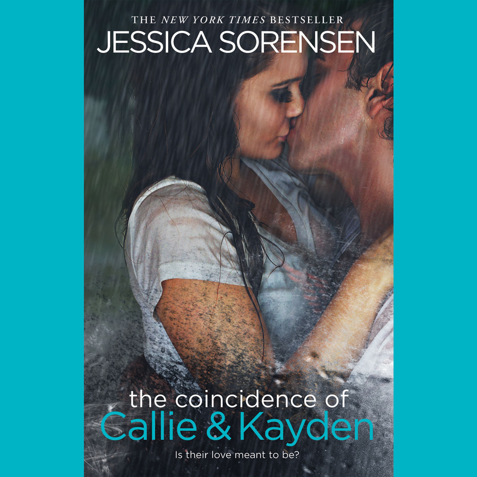 Printable The Coincidence of Callie & Kayden Audiobook Cover Art