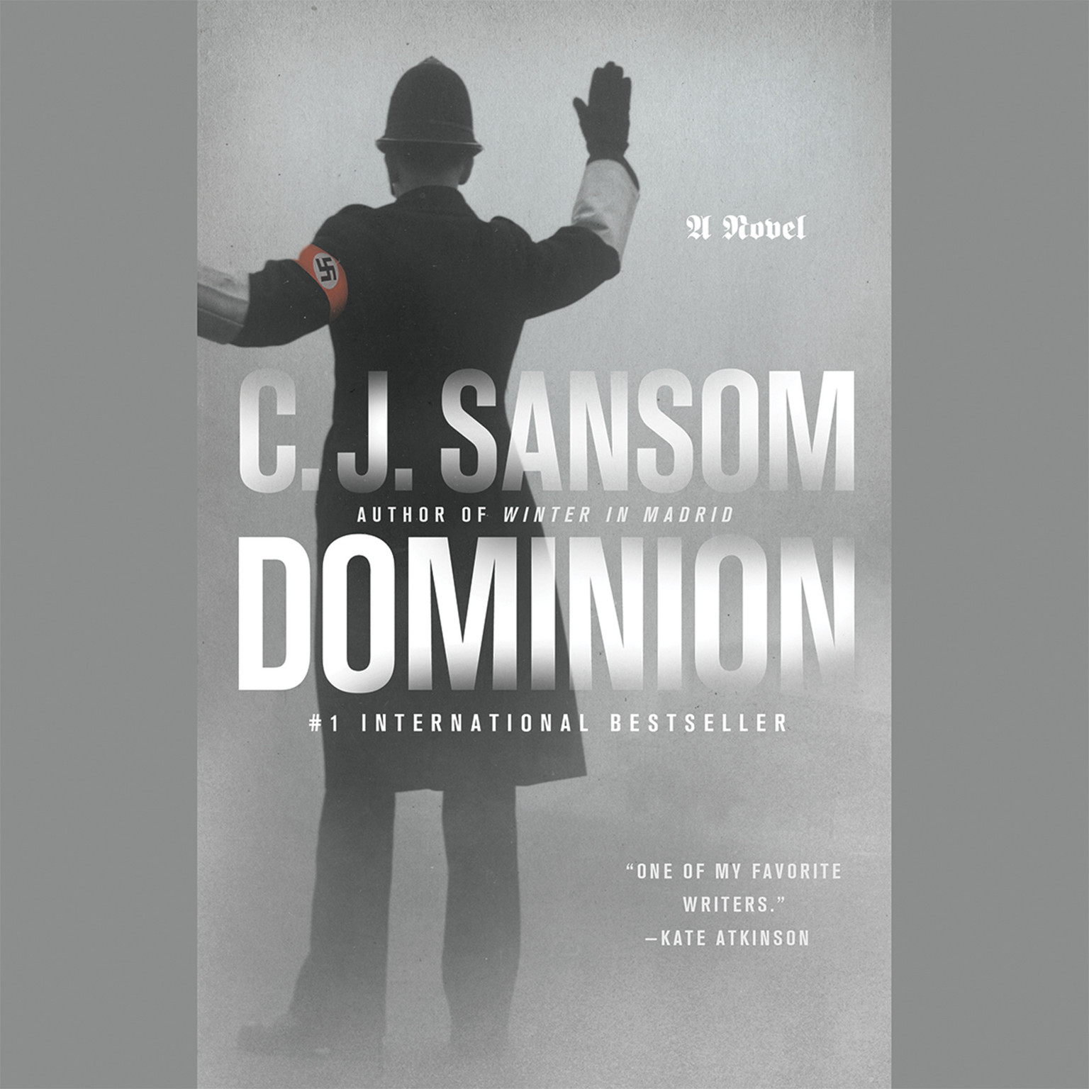 Printable Dominion Audiobook Cover Art