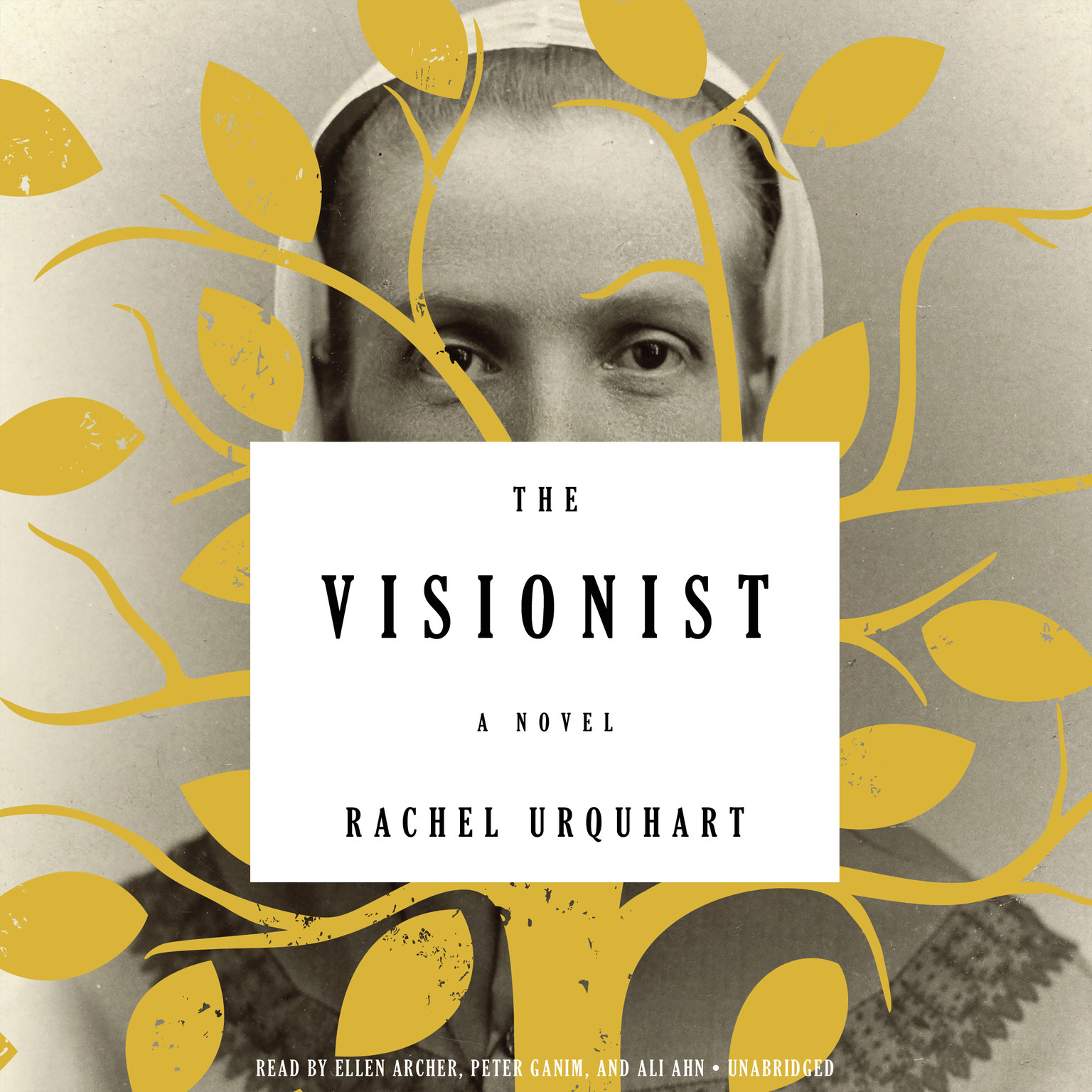 Printable The Visionist: A Novel Audiobook Cover Art