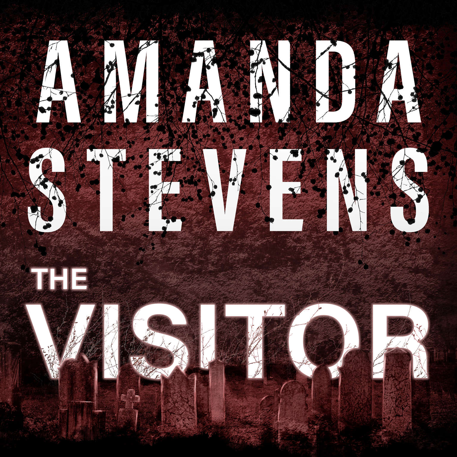 Printable The Visitor Audiobook Cover Art