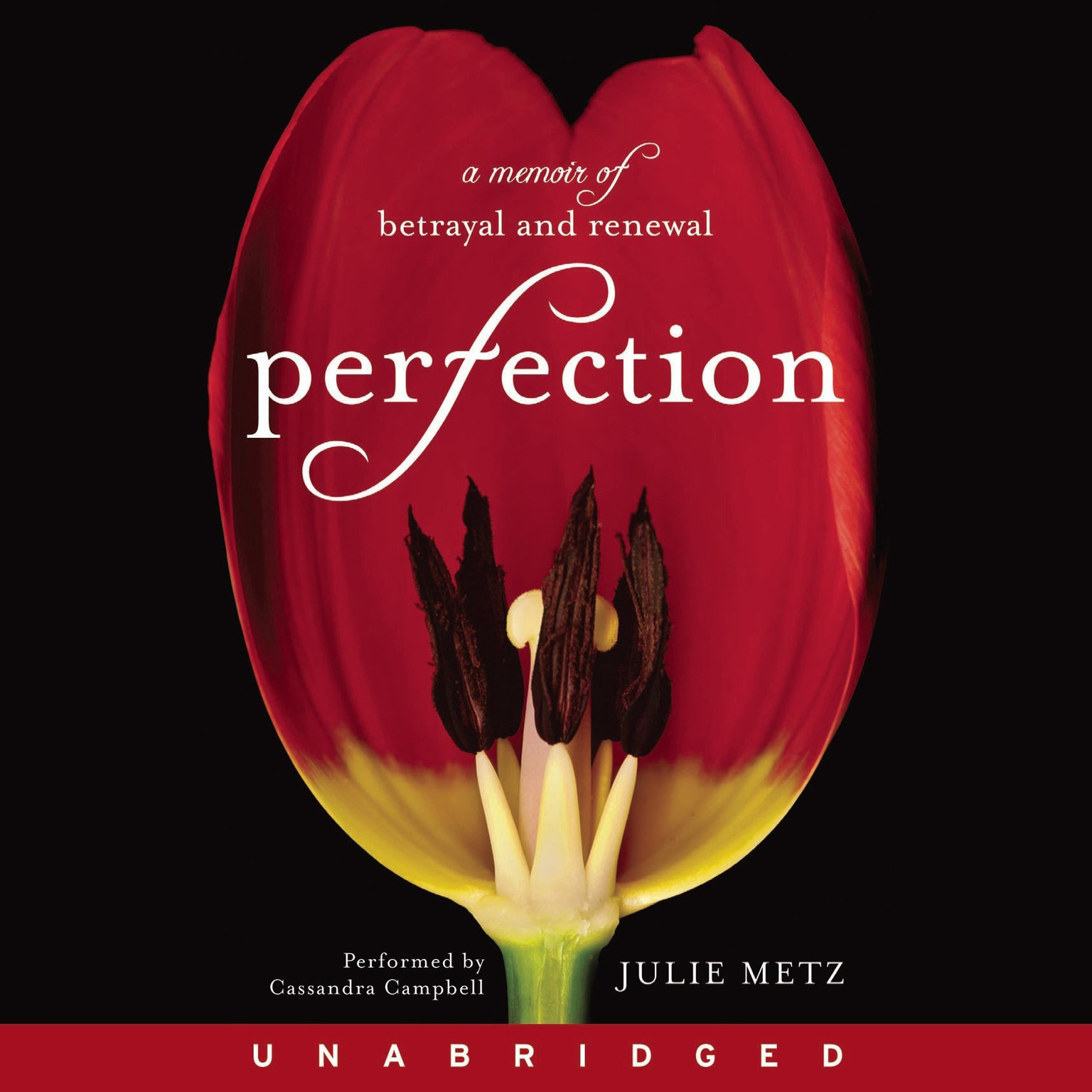 Printable Perfection: A Memoir of Betrayal and Renewal Audiobook Cover Art