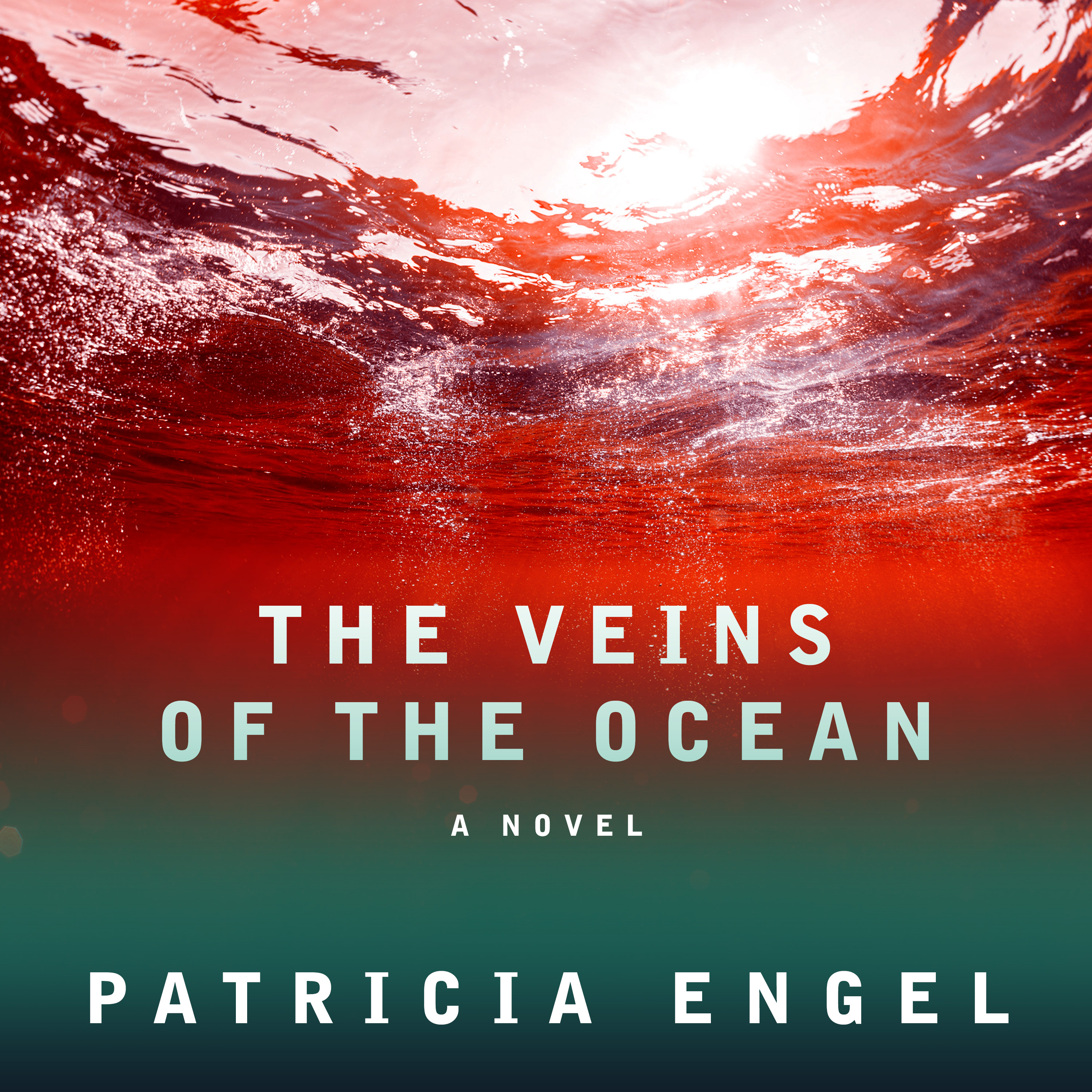 Printable The Veins of the Ocean: A Novel Audiobook Cover Art