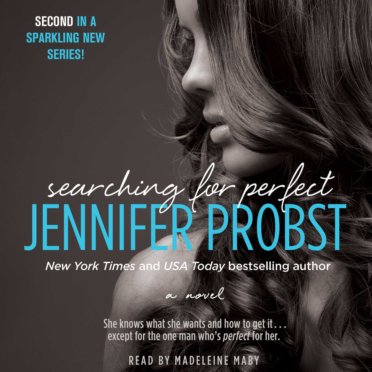 Printable Searching for Perfect: A Novel Audiobook Cover Art