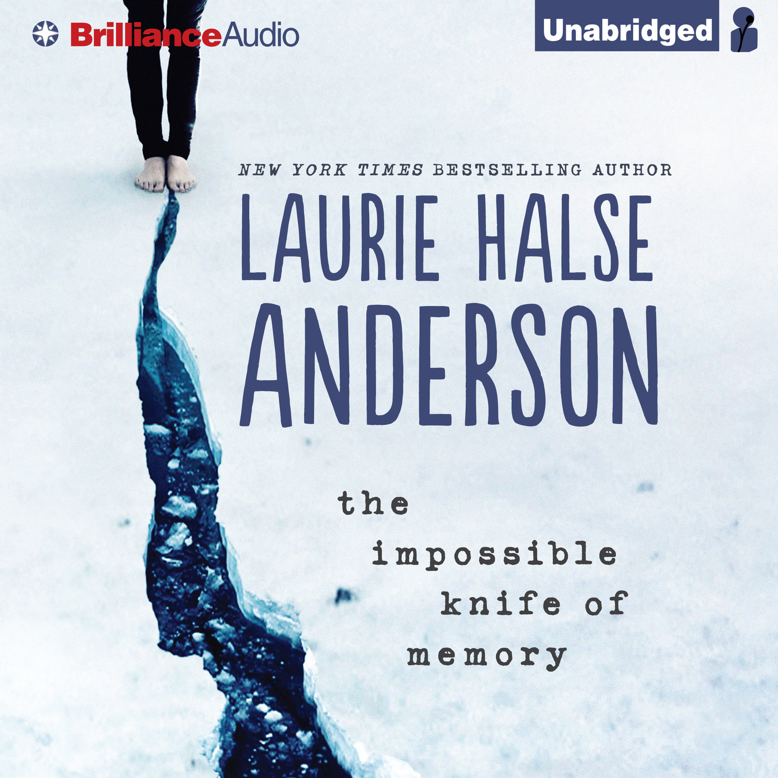 Printable The Impossible Knife of Memory Audiobook Cover Art
