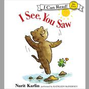 I See, You Saw, by Nurit Karlin
