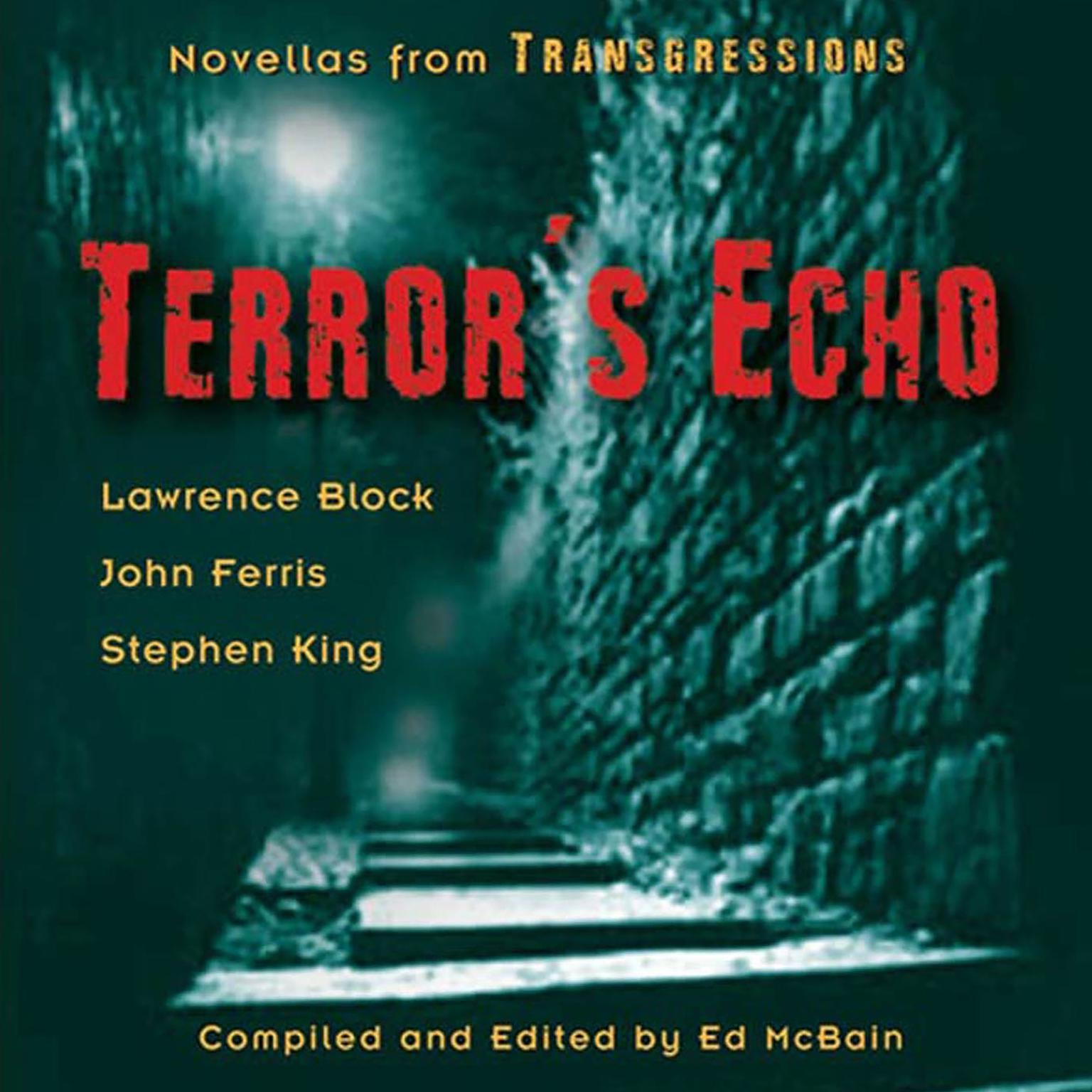 Printable Transgressions: Terror's Echo: Three Novellas from Transgressions Audiobook Cover Art
