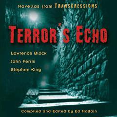 Transgressions: Terrors Echo: Three Novellas from Transgressions Audiobook, by Ed McBain, John Farris, Lawrence Block, Stephen King