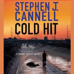 Cold Hit: A Shane Scully Novel Audiobook, by Author Info Added Soon