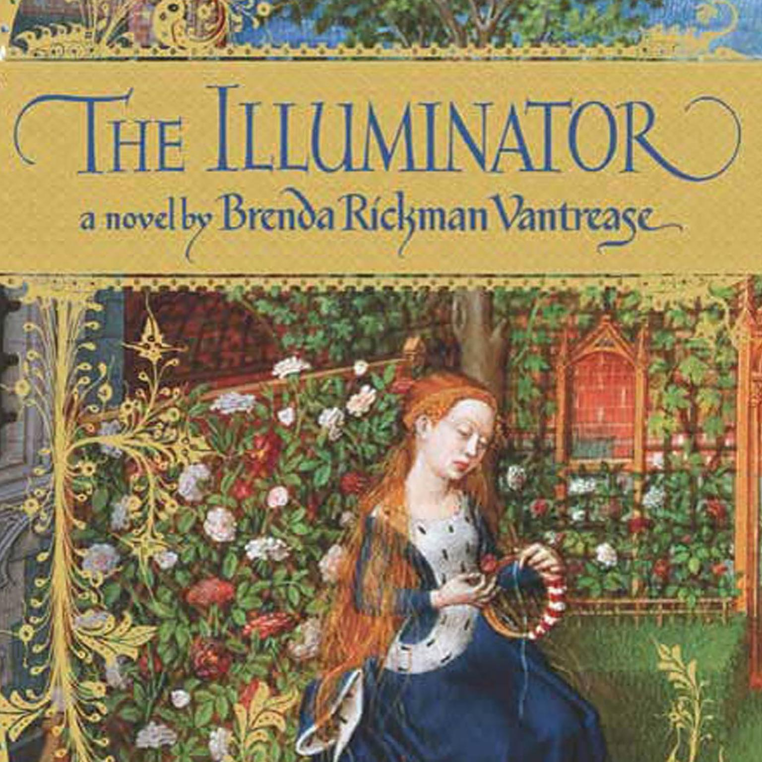 Printable The Illuminator Audiobook Cover Art