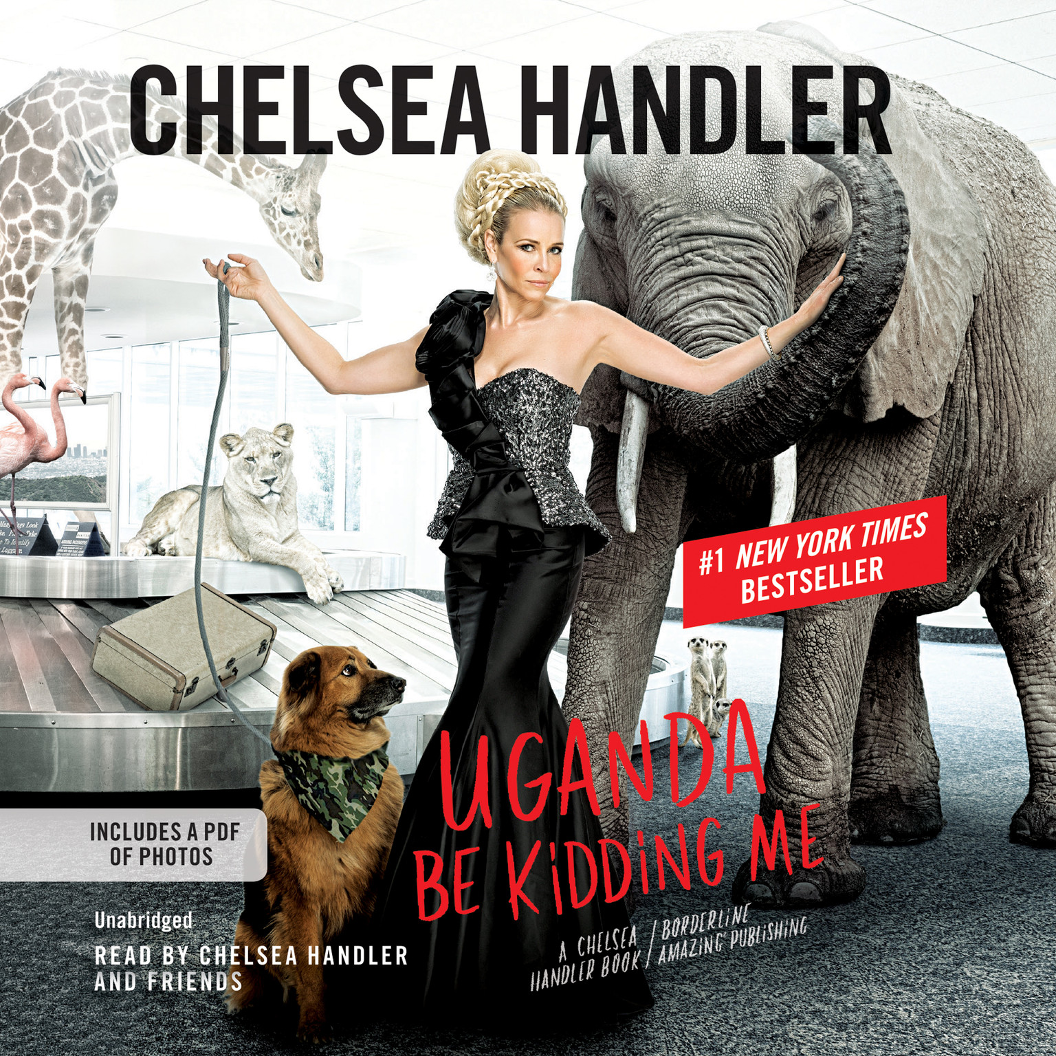 Printable Uganda Be Kidding Me Audiobook Cover Art