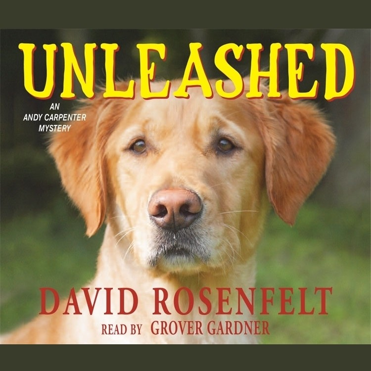 Printable Unleashed Audiobook Cover Art