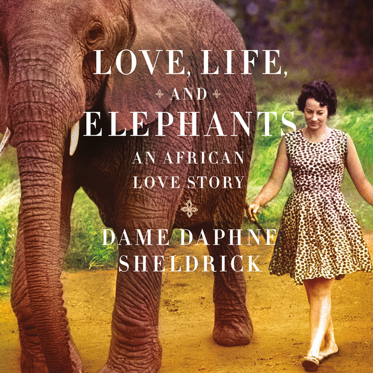 Printable Love, Life, and Elephants: An African Love Story Audiobook Cover Art