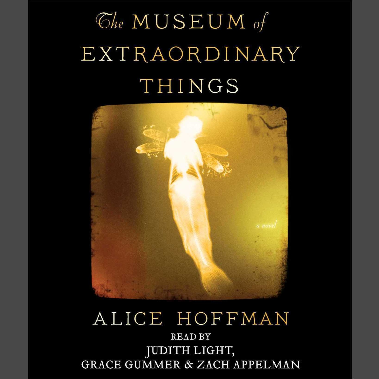 Printable The Museum of Extraordinary Things: A Novel Audiobook Cover Art