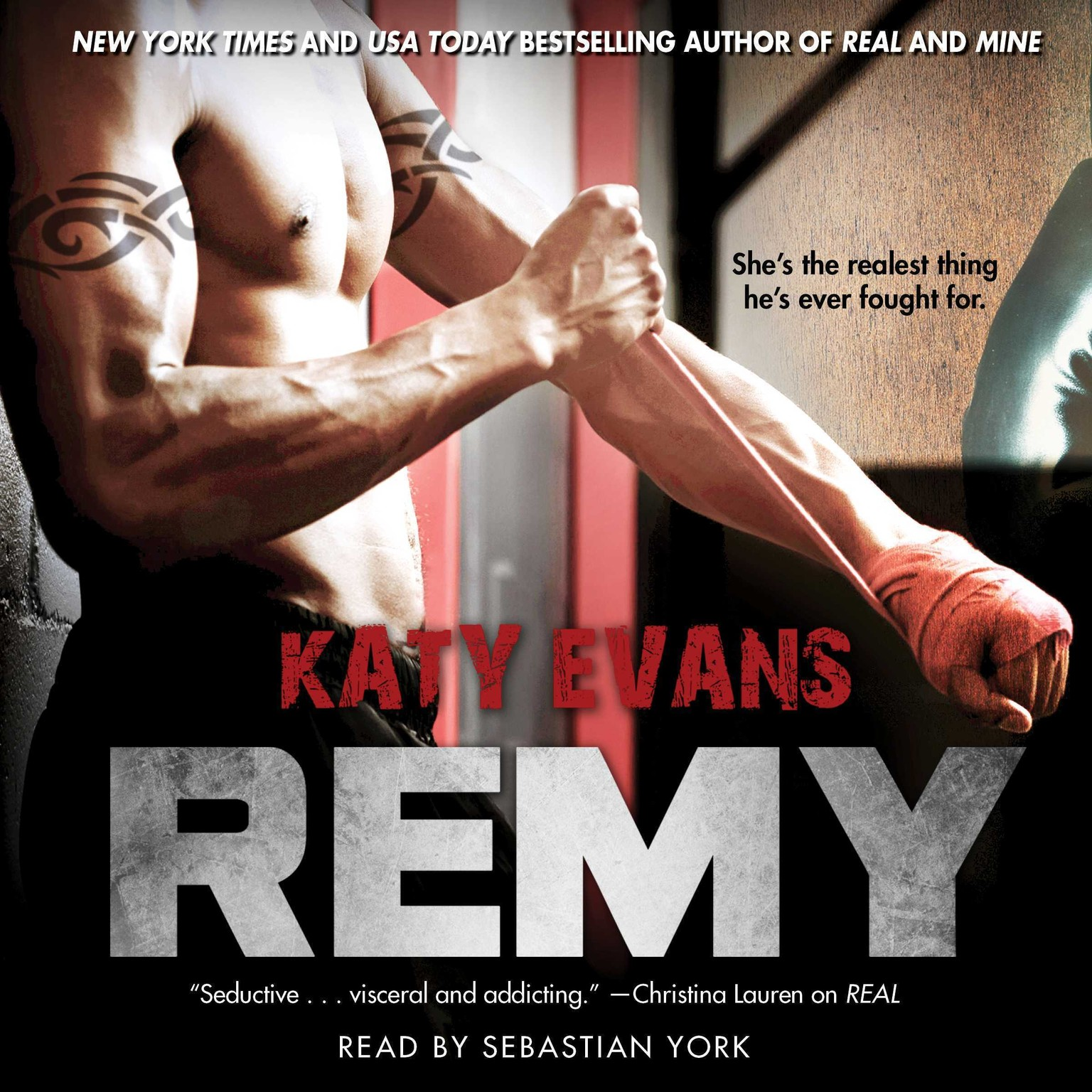 Printable Remy Audiobook Cover Art