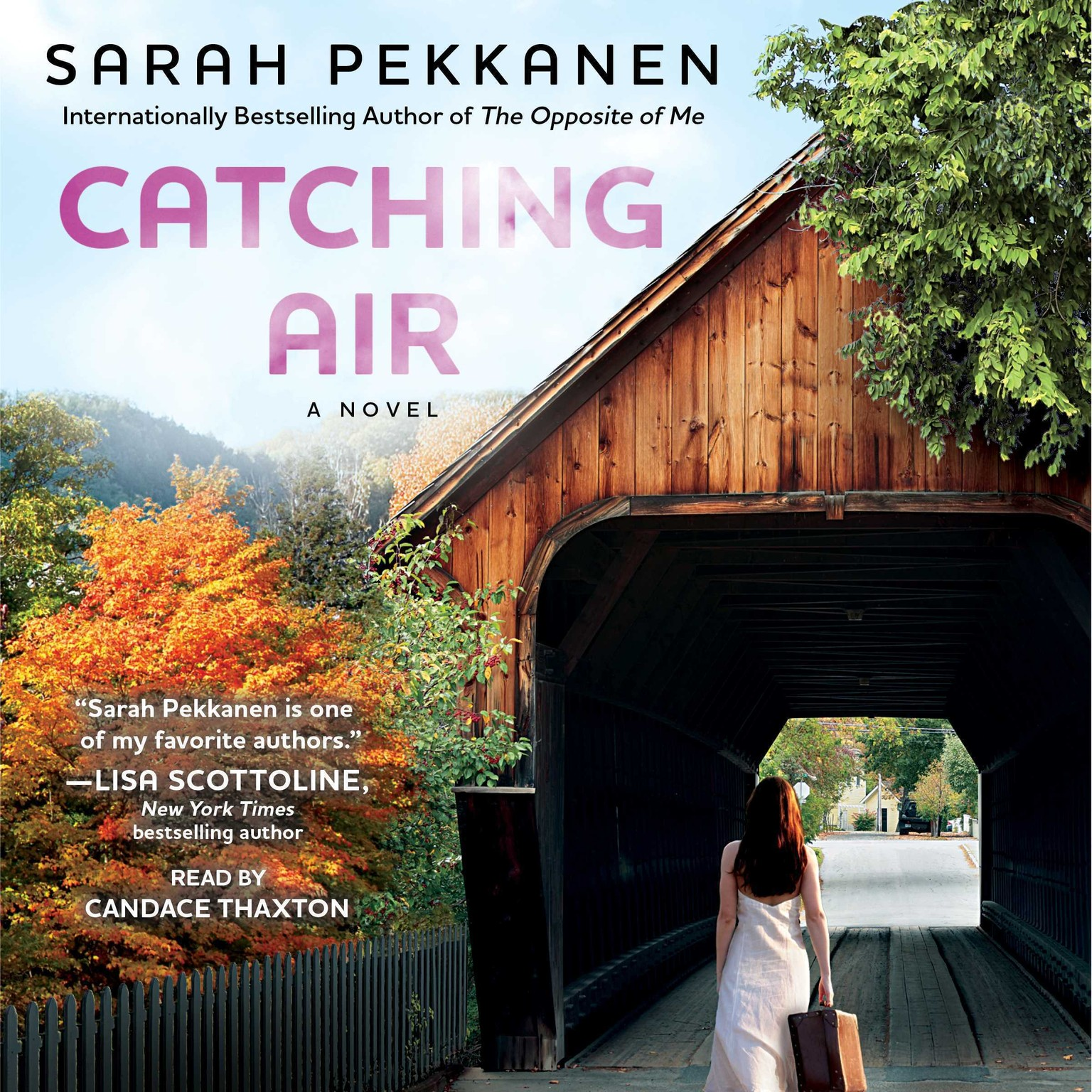 Printable Catching Air: A Novel Audiobook Cover Art