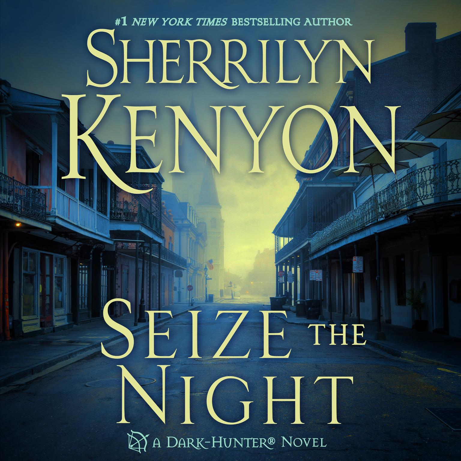 Printable Seize the Night Audiobook Cover Art